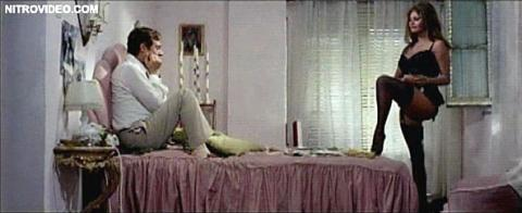 Sophia Loren Yesterday Celebrity Hot Famous Female Babe Sexy