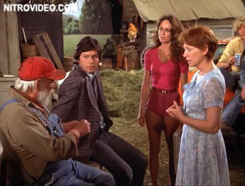 Catherine Bach Dukes Of Hazzard Tv Celebrity Famous Female