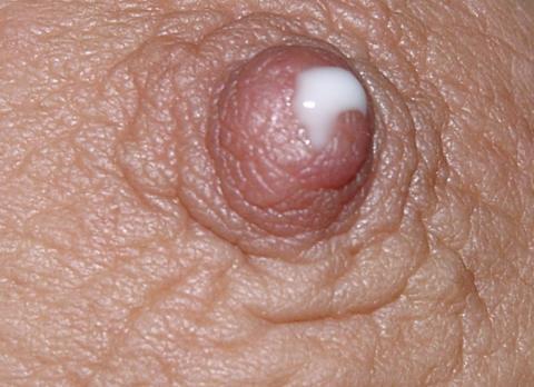 Kaylyn Lactating Homeless Sammarinese Close Up Medium Tits